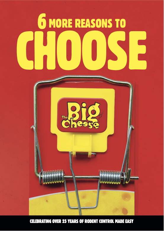 STV International The Big Cheese - 6 Reasons to Stock